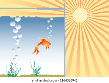 Heat and coolness concept. Goldfish in the aquarium in good conditions.Raster version.