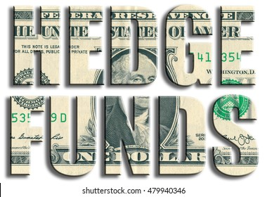 Hedge Funds - type of financial institutions. US Dollar texture. 3D illustration.