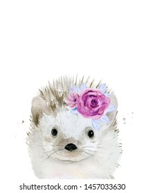 Hedgehog with flowers on the head. Watercolour illustration isolated on white background.