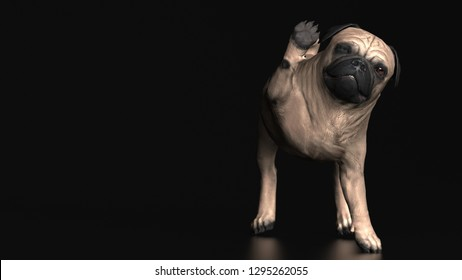 Hello from little friend pug dog standing 3d illustration