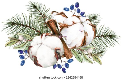 Herbal composition with cotton, cinnamon, berries, eucalyptus and pine needles. Watercolor illustration.