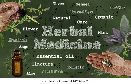 Herbal Medicine illustration with Hands, Herbs, and Pipette on Green Blackboard