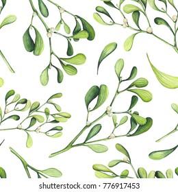 Herbal Seamless Pattern of Watercolor Light Green Mistletoe