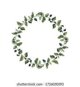 Herbal wreath of balm mint twigs, isolated on white. Watercolour botanical illustration. Frame for greeting cards or invitations. Page decorative element.