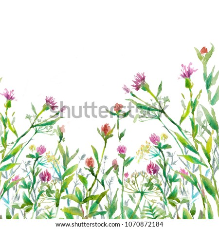 Herbs green grass pink flowers on stock illustration 1070872184 herbs and green grass with pink flowers on white background watercolor illustration mightylinksfo