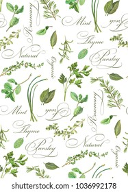 Herbs Pencil Drawing Seamless Pattern