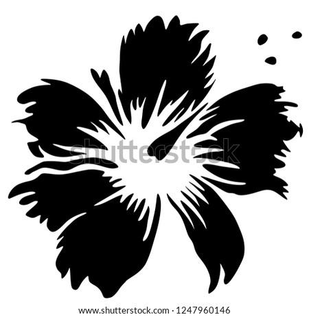 Hibiscus Flower Tropic Plant Black White Stock Illustration