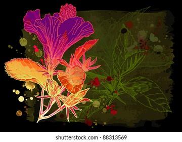 Hibiscus flower & watercolor background. Bitmap copy my vector id 17996029
