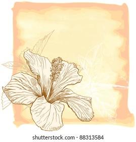 Hibiscus flower & watercolor background. Bitmap copy my vector id 16239835