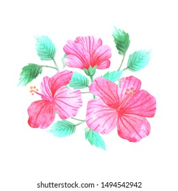 hibiscus flowers tropical watercolor pink leaves bouquet composition botanical illustration  nature isolated background
