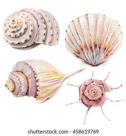 high quality watercolor set of underwater life objects. There are sea shells, corals, stones, stars. It can be used for cards, invitation, wedding design, cover, poster.