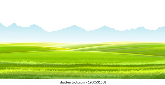 Hills and meadows. Haymaking in pastures. Agricultural land. Green grass. Mountains in the distance. Beautiful rural landscape. Isolated over white background.