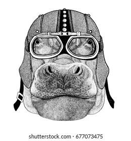 Hippo, Hippopotamus, behemoth, river-horse Motorcycle, biker, aviator, fly club Illustration for tattoo, t-shirt, emblem, badge, logo, patch