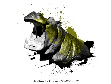 Hippopotamus watercolor with Splash on white 