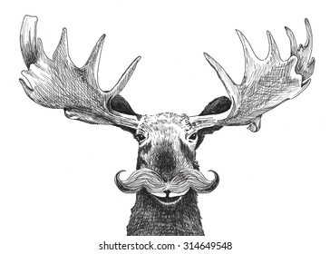 hipster moose with handlebar mustache, hand drawn funny moose character with facial hair and large antlers isolated on white background. Cute hipster animal cartoon creature.
