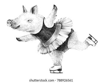 Hipster pig skating hand drawn ballpoint pen illustration
