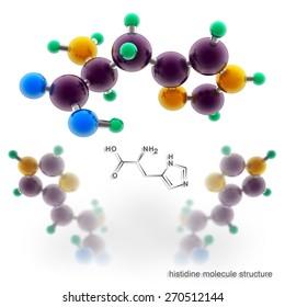 Histidine molecule structure. Three dimensional model render
