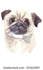 holiday gift pug dog illustration watercolor