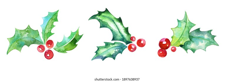 Holly. Set of three sprigs of holly. Green watercolor leaves with red berries. Stylized holly twigs. Christmas symbol. Plant shoots. Mate tea