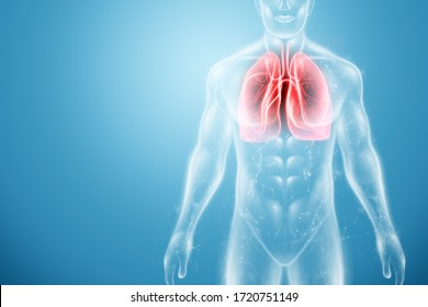 Hologram of inflamed lungs in the human body. The concept of lung disease, pneumonia, covid-19 pandemic, coronavirus. 3D rendering, 3D illustration
