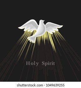 Holy Spirit icon. Hand drawn style. Christian holiday Pentecost Trinity Sunday concept. Church sacrament biblical symbol of flying spiritual dove. Pentecostal greeting religious illustration