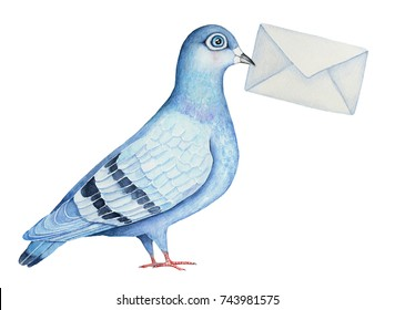 Homing fancy pigeon character holding a mail envelope letter. Post delivering symbol. Classic blue and gray colors. Friendly message. Hand drawn watercolor illustration, isolated on white background.