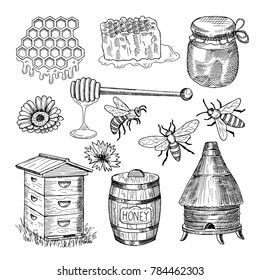 Honey, bee, honeycomb and other thematically hand drawn pictures. vintage illustration. Honey bee insect, honeycomb organic