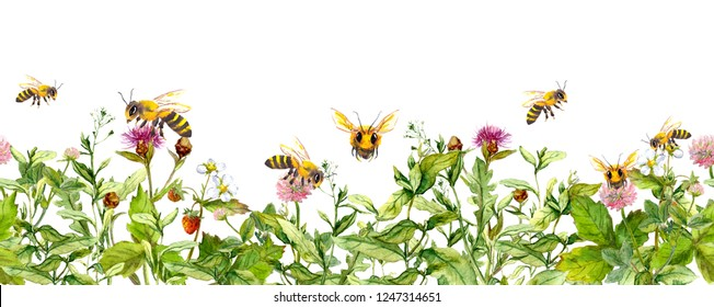 Honey bees in meadow flowers, summer grasses. Seamless floral horizontal border. Watercolour