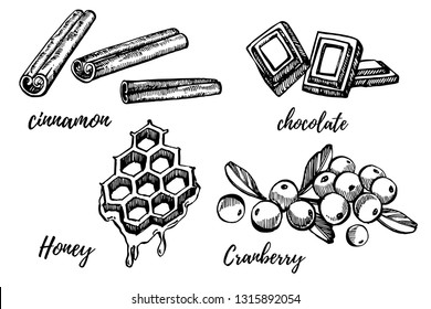 Honey, Cranberry, Chocolate and Cinnamon sketch illustrations. Hand drawn illustrations isolated on white background.