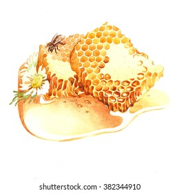 honey. honeycomb. this picture can be used as a background , decor for postcards , printing , advertising