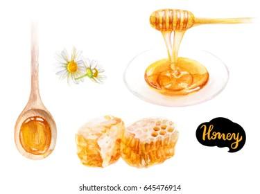 Honey watercolor illustration. Honey dripping, honey comb, chamomile flower isolated on white background.