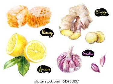 Honey watercolor illustration. Honeycomb, lemon cut, chamomile flower isolated on white background. Medical healthy set ingredients.