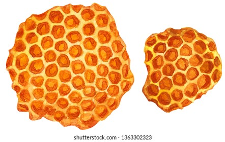 Honeycomb watercolor illustration, isolated on white with working path