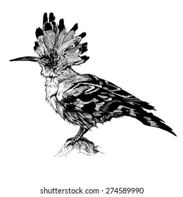 HOOP SITTING BIRD INK
