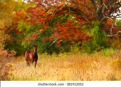 Horse in the autumn woods