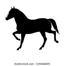 Horse silhouette image; monochrome  artwork, silhouette graphics.