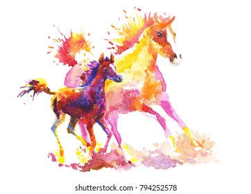 A horse with a stallion, drawn in watercolor, freely gallops
