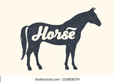 Horse, stallion, lettering. Design of farm animals - Horse side view profile. Isolated black silhouette horse or stallion with text lettering on white background. Illustration