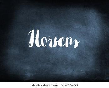 Horsens is a Danish town