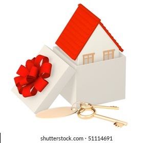 House in gift packing