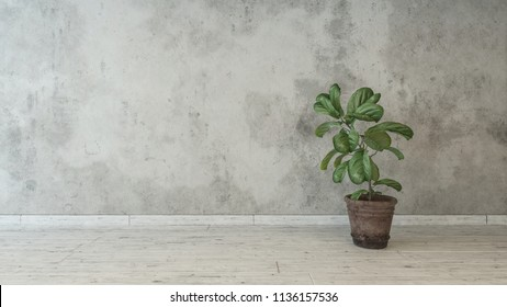 Houseplant standing against raw wall in loft style room. 3d Rendering
