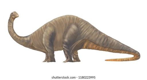 A huge but Cute looking friendly Dinosaur Apatosaurus or Brachiosaurus or even Giant Lizard who lived about 152 to 151 million years ago,