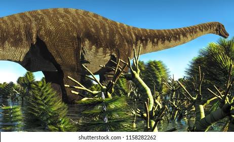 Huge Diplodocus in wetland at sunset, 3d illustration