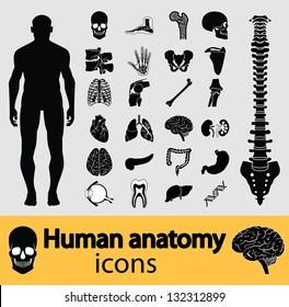 Human anatomy black & white icon set. Vector version also available in my portfolio.