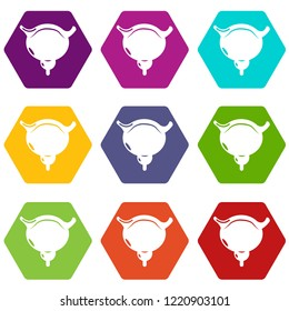 Human bladder icons 9 set coloful isolated on white for web