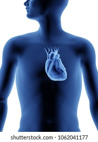 The Human Body - Heart. X-Ray Effect. 3D illustration