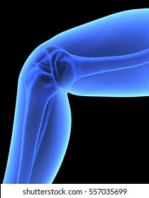 The Human Body - Knee. X-ray Effect. 3D illustration