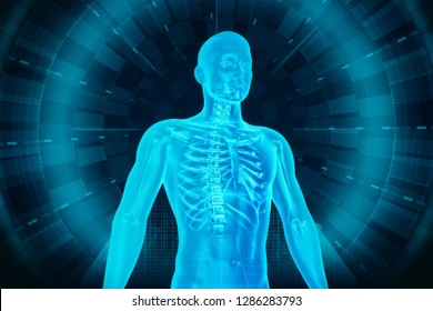 The human body is the structure of a human being. It is composed of many different types of cells that together create tissues and subsequently organ systems. 3D illustration