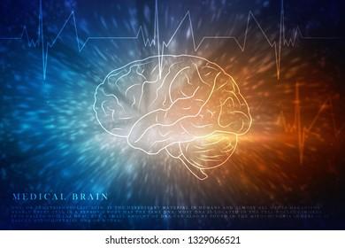 Human brain 2d illustration