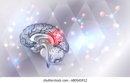 Human brain abstract light grey abstract background with glow
